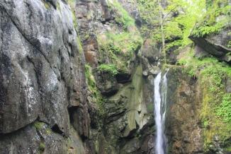 Priroden dush, Bulgaria